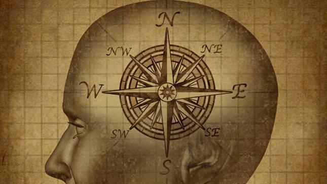 compass-cogs-645x364